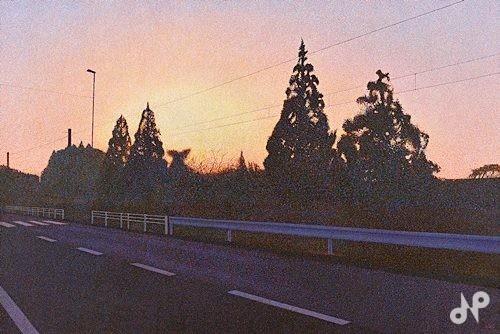 Rise again -the sun also rises-