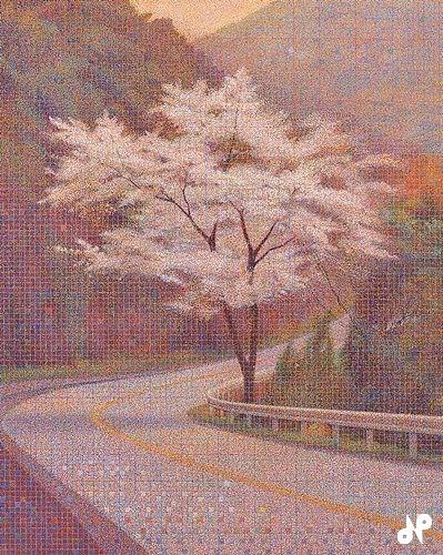 旅の途中(桜)